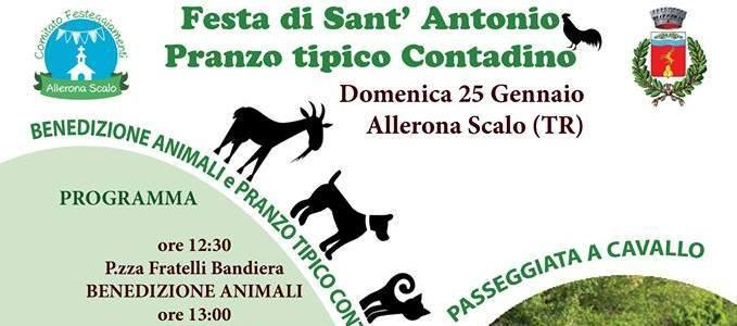 Festa di Sant' Antonio a Allerona Scalo