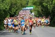 Green European Marathon 2015