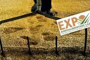 Expo Agroalimentare Lazio 2015