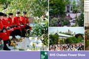 RHS Chelsea Flower Show - Fiori e Giardini in mostra a Londra