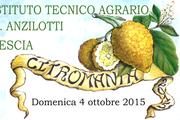 Citromania 2015 - Agrumi Ornamentali