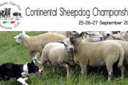 Continental Sheepdog Championship 2015