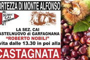 Castagnanta 2015 a Monte Alfonso
