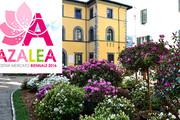 Borgo a Mozzano presenta la Mostra Mercato Azalea 2016