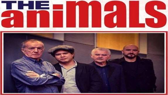 The Animals a Bluesacco 2018