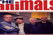 The Animals a Bluesacco 2018