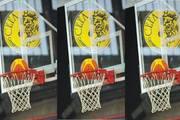 Basket al Summer Camp