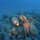 Apertura alla visita per i subacquei del relitto della nave romana di Imperia