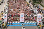 Maratona di Tokyo 2014